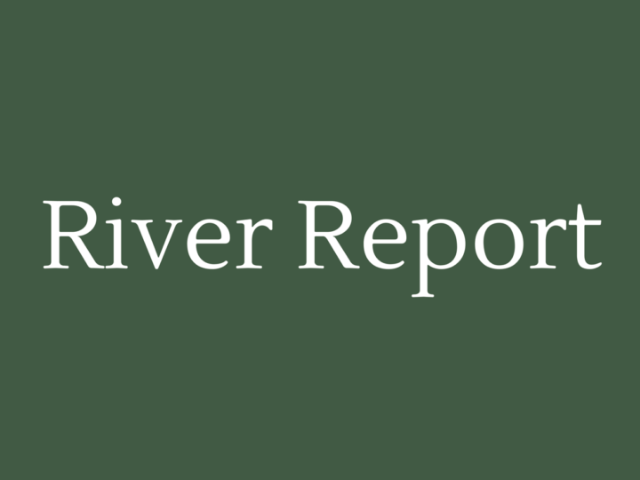 River Report January 2019