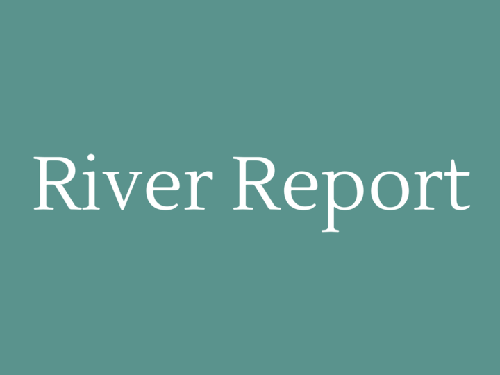 River Report December'16/January'17