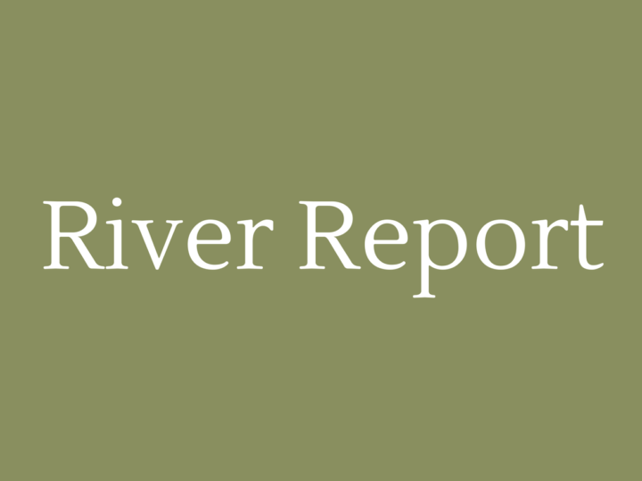 River Report January 2018